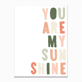 You Are My Sunshine Lyrics   Blush Pink & Green Canvas Print