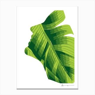Finese Canvas Print