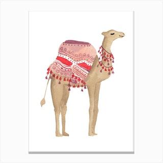 Camel 2 Canvas Print