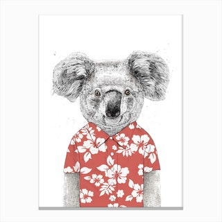 Summer koala Canvas Print