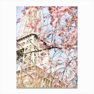Cherry Blossom Eiffel Tower Canvas Print