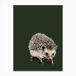 Kimchi The Hedgehog On Forest Green Canvas Print
