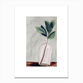Vase And Stems Canvas Print