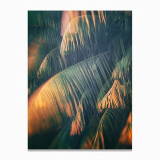 Tropical Xxiii Canvas Print