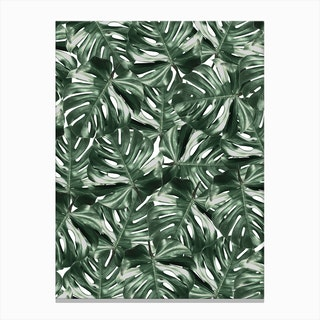 Tropicale IV Canvas Print