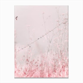Birds on a Wire - Pink Canvas Print