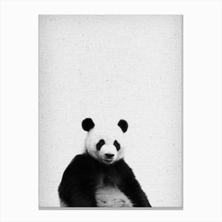 Frolein Panda IV Canvas Print