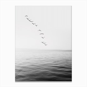 Birds And Ocean Canvas Print