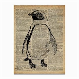 Penguin Bird Canvas Print