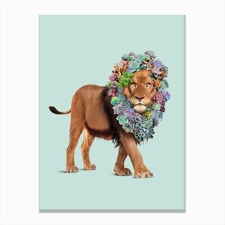 Succulent Lion Canvas Print