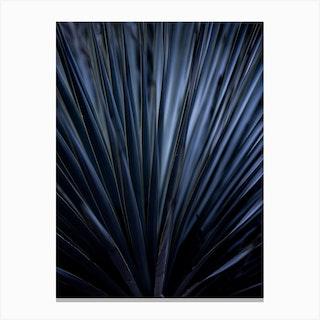 Blue Straws 2 Canvas Print