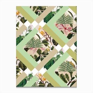 Cubed Vintage Botanicals Canvas Print