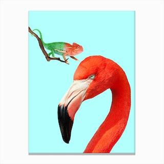 Colorful Friends Canvas Print