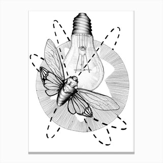 Moth To The Flame Canvas Print