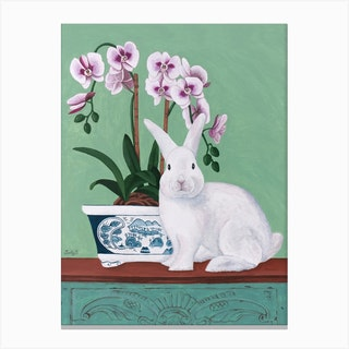 Rabbit And Orchid Canvas Print