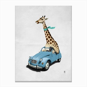Riding High! (Wordless) Canvas Print