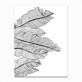 Banana Leaves V Canvas Print