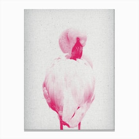 Froilein Flamingo II Canvas Print