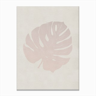 Monstera Rose Canvas Print