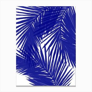 Royal Palms Canvas Print