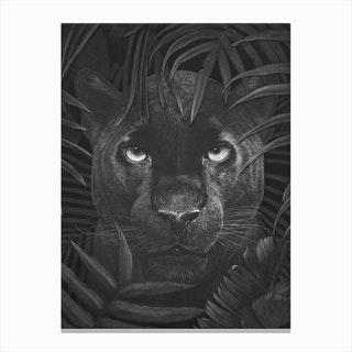 Panther In Jungle Canvas Print