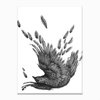 Raven Unravelled Canvas Print