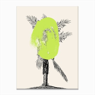 Tropical Tree Green Canvas Print