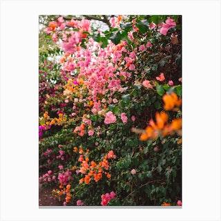 La Garden Canvas Print