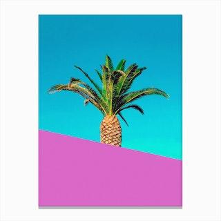 Palm Pink Canvas Print