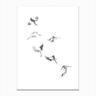 Flight Of Six Canvas Print