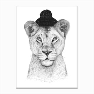 Lioness In Hat Canvas Print