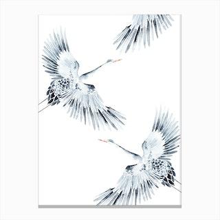 Cranes 1 Canvas Print