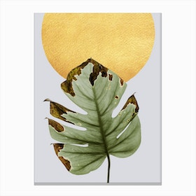 Dancing Leaf in the Sun Canvas Print