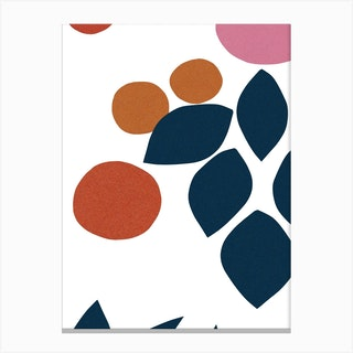Forms 1 Canvas Print