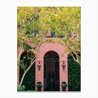 Charleston Pink XVIII Canvas Print