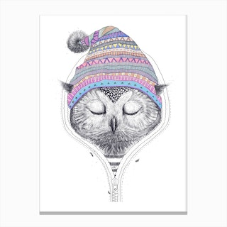 Owl In A Hood Canvas Print