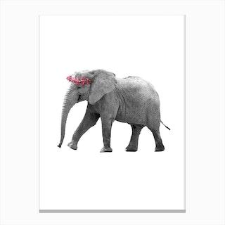 Dressy Elephant Canvas Print