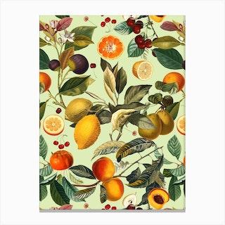 Vintage Fruit Pattern 13 Canvas Print