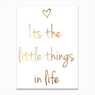 Little Things II Canvas Print
