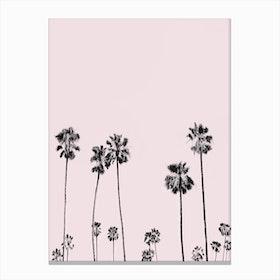 Palm Valley Blush Canvas Print