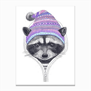 Raccoon In A Hood Canvas Print