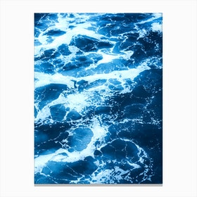 Tropical XX Canvas Print