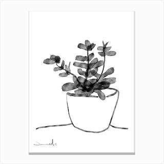 Window Plant Canvas Print