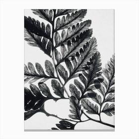 Botanical Fern  II Canvas Print