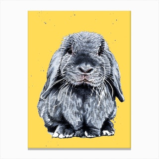 Grey One The Bunny Canvas Print