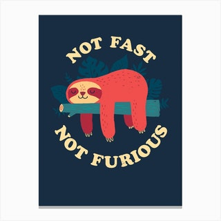 Not Fast Not Furious Canvas Print