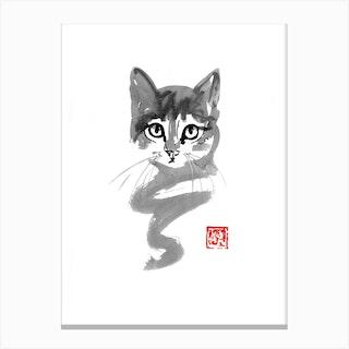 Cat Line Canvas Print