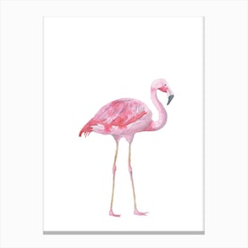 Pink Watercolour Flamingo Canvas Print