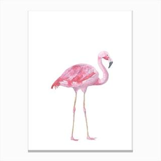 Pink Watercolour Flamingo Canvas Print