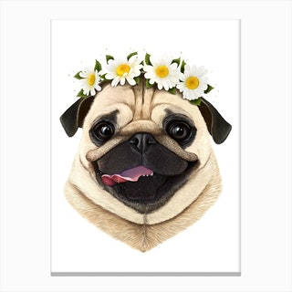 Pug With Flowers Canvas Print